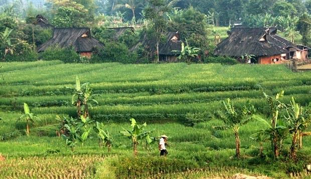 Kampung Budaya Sindang Barang Desa Pasir Eurih